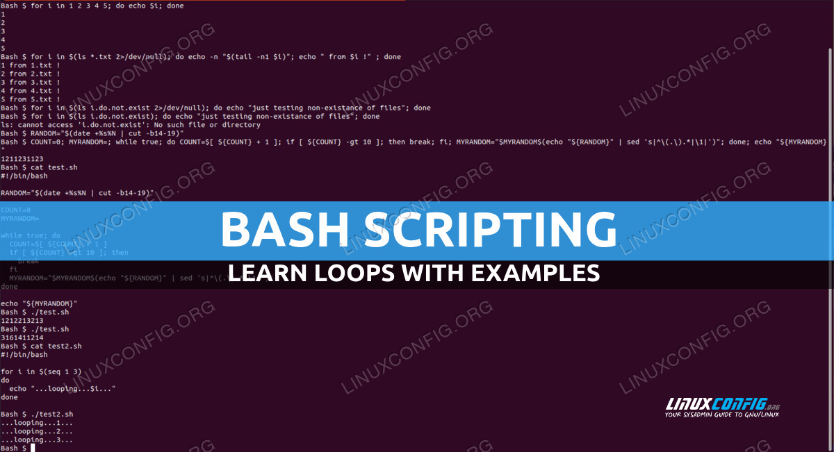 Bash Scripting - Bash Loops with examples