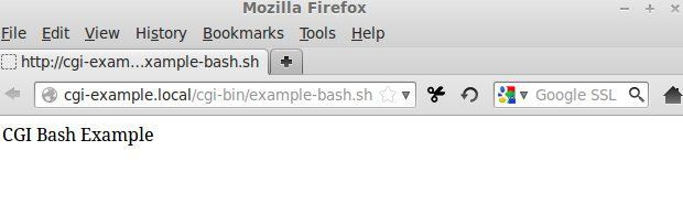 CGI bash example