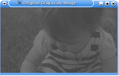 Image Processing, Linear stretch and OpenCV - LinuxConfig org