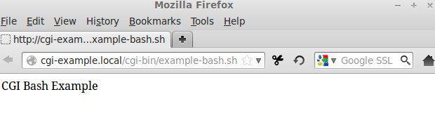 CGI bash example