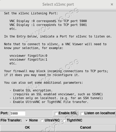 Select x11vnc port window