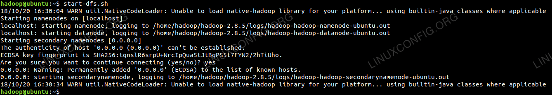 Starting the DFS Startup Script to start HDFS
