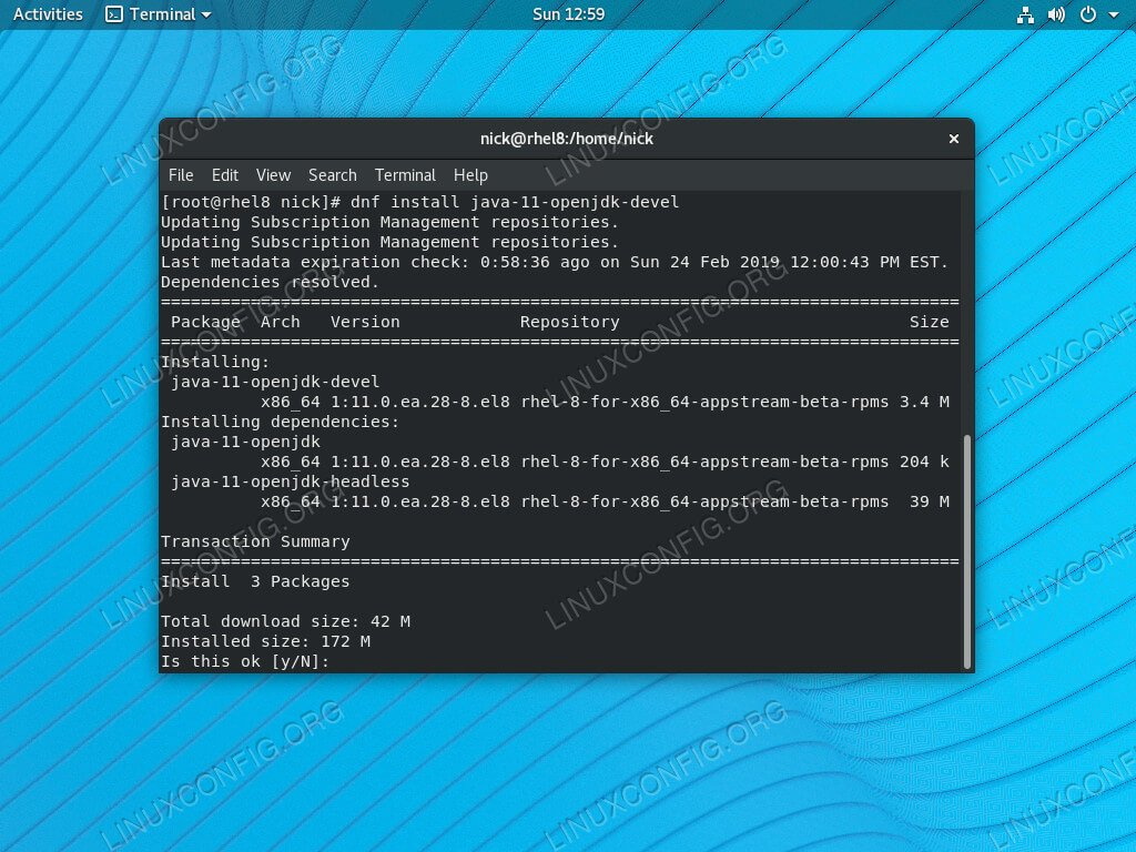 Install OpenJDK 11 on RHEL 8