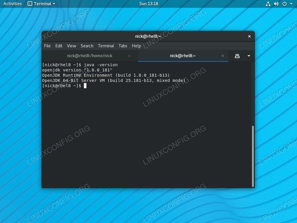 Check Java Version on RHEL 8