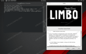 This executable .bin file launched a GUI installer for a Linux game