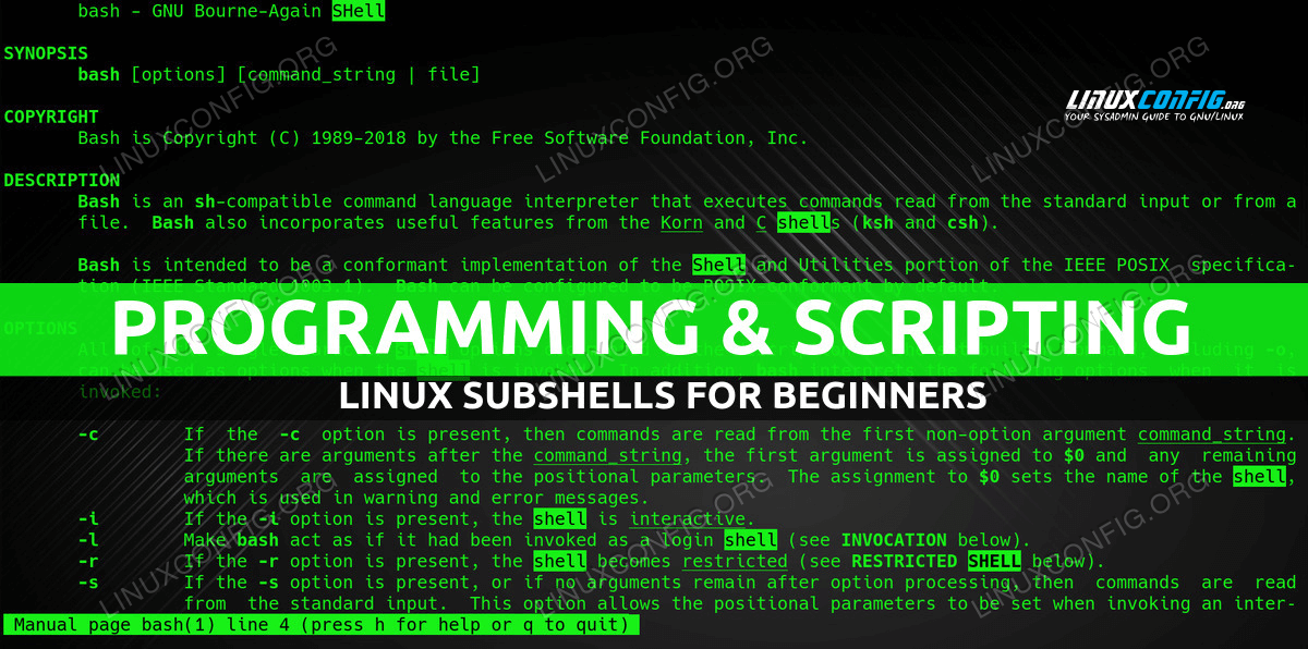 Linux Subshells for Beginners With Examples