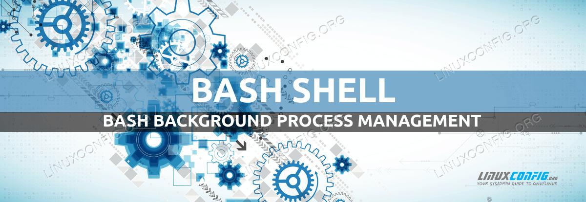 Bash Background Process Management