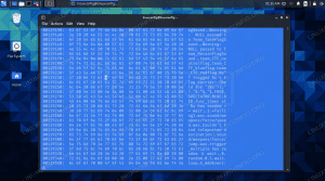 Using a hex editor to view binary file on Kali Linux