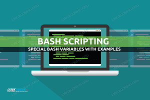 Special Bash Variables with examples