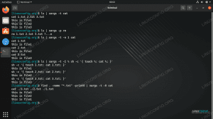 Various xargs command examples on Linux