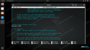 Configuring Squid proxy on Linux